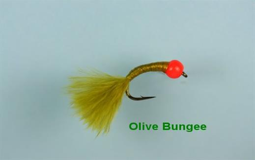 Olive Bungee