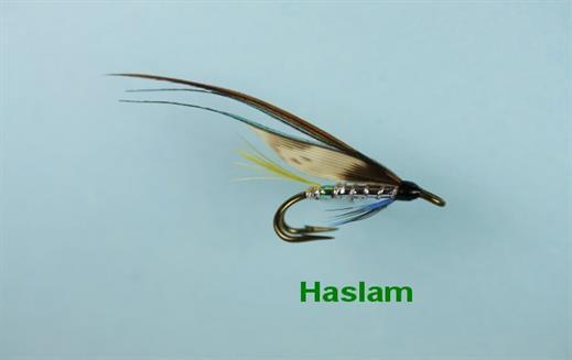 Haslam Double