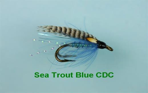 Blue CDC JC Double