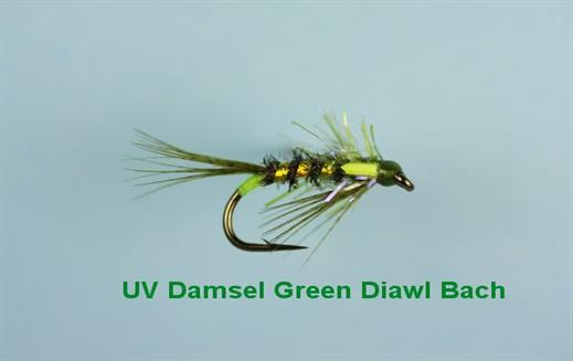 Diawl Bach UV Damsel Green