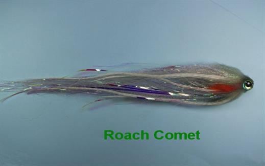 Roach Comet