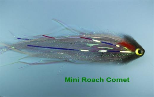Roach Mini Comet