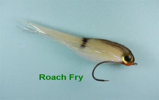 Mini Roach Fry