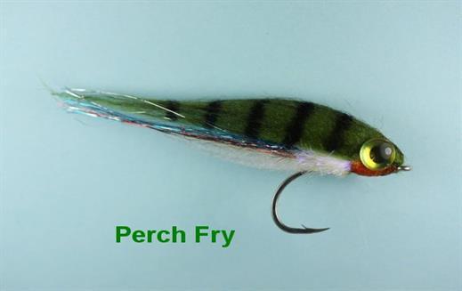 Mini Perch Fry