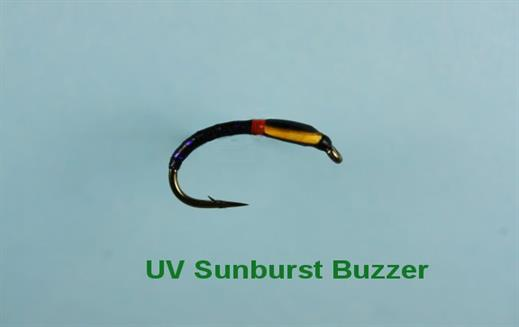 UV Sunburst Buzzer