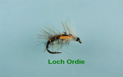 Loch Ordie Snatcher