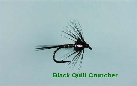 Cruncher Black Quill