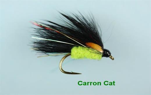 Carron Cat
