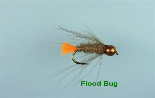 Flood Bug