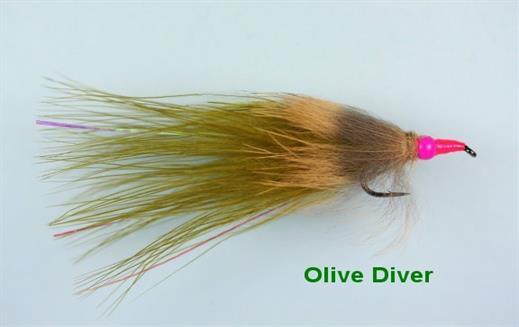 Olive Diver
