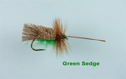 Green Sedge