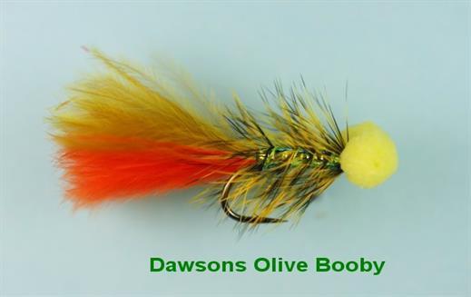 Dawsons Olive Booby