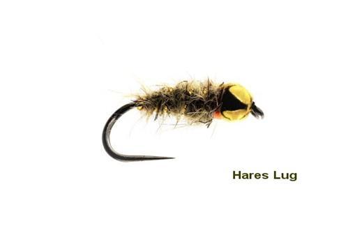 Hares Lug