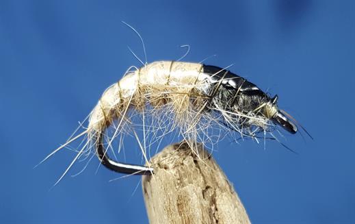 Czech Natural Bug