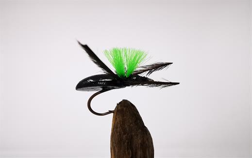 Foam Beetle Green