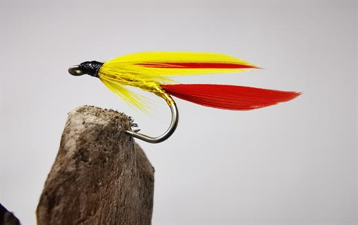 Montana Trout Flies 6 Pack Goldhead Yellow tailed Montana Size 10 Fly Fishing