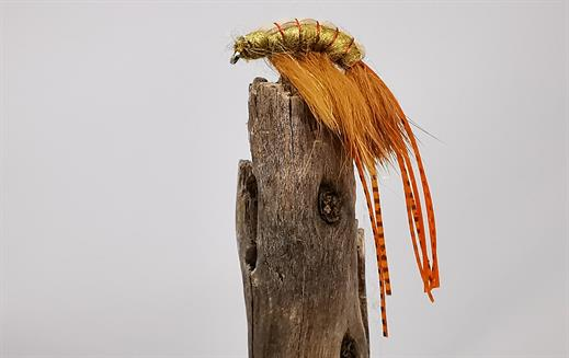 Long Legged Shrimp