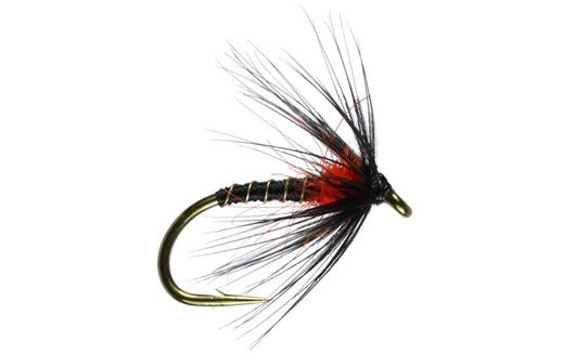 Duck Fly