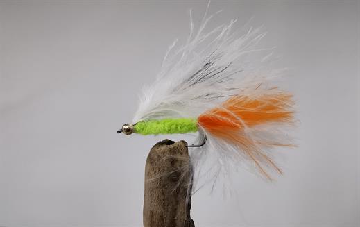Orange Cats Whisker Goldhead