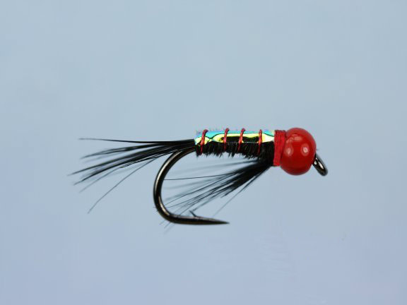 Red Diawl Bach