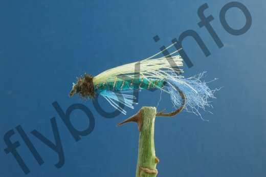 BC Tel Fly