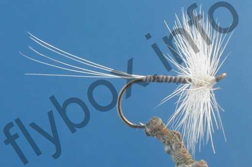 Blue Quill Hackle