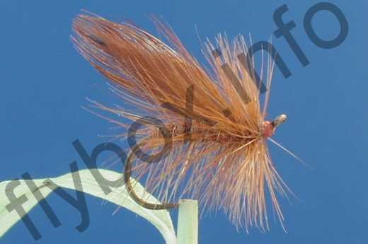 Little Brown Sedge