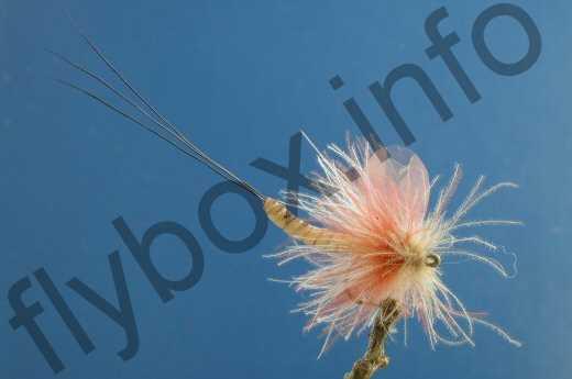 Dry Mayfly