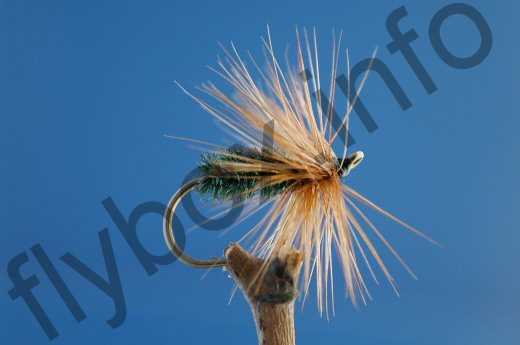 Red Hackle