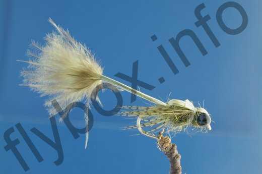 Olive Larva Lace Damsel