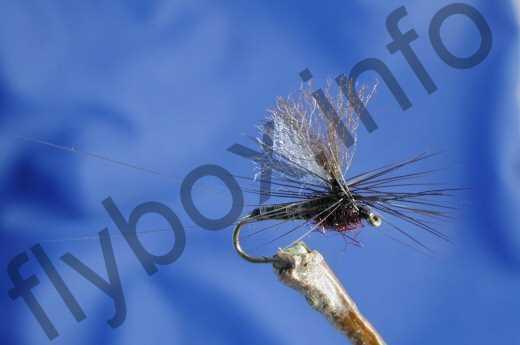 Parachute Black Spinner