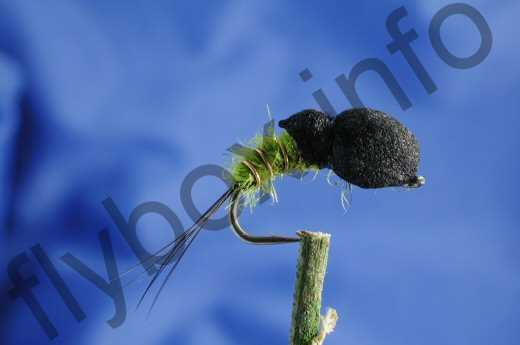 Bretts Snail Thong