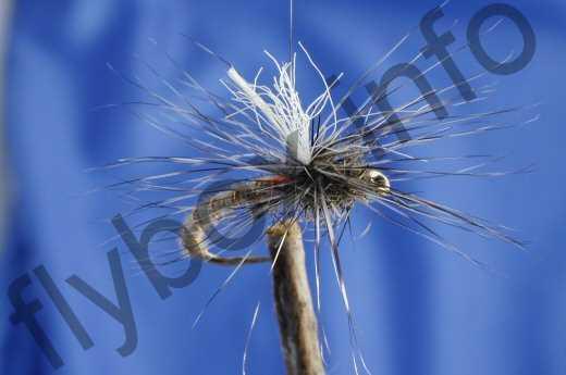 Nimrod Parachute