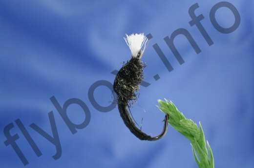 Black Buzzer