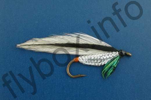 Silver Darter