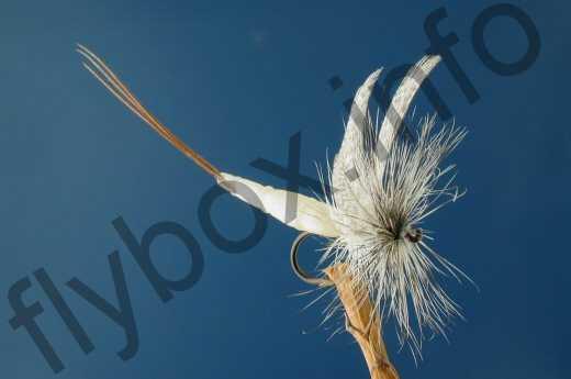 Detached Body Mayfly White