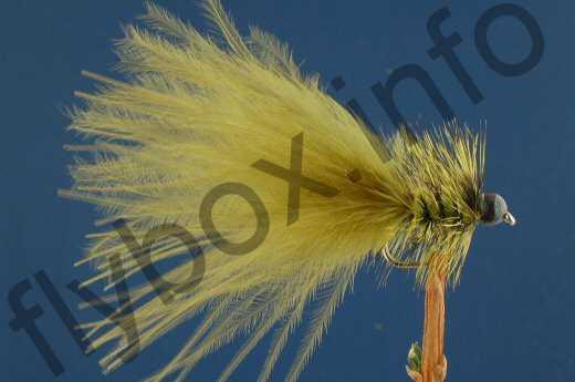 Olive Leadhead