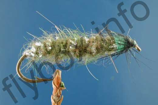 Bottom Caddis