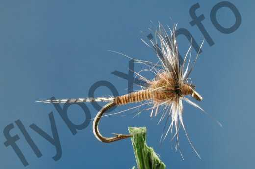 Floating Pheasant Tail