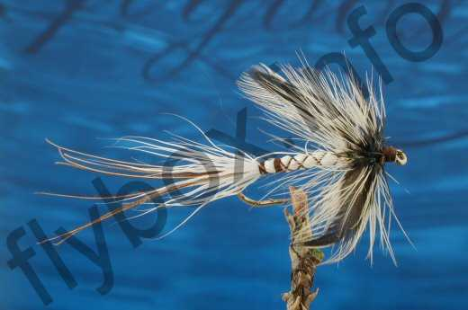 Spent Deerstalker Mayfly White