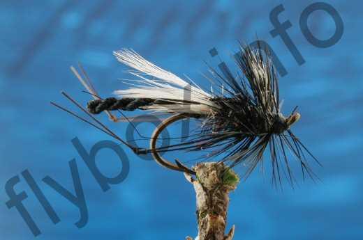 Detached Body Hawthorn
