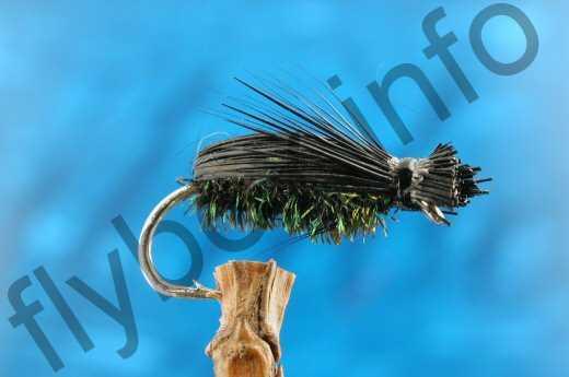 Deer Hair Beetle