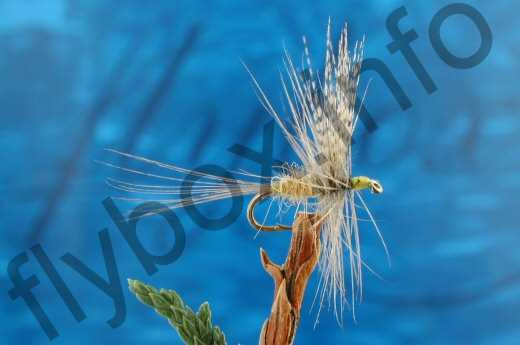 Ivors Blue Winged Olive