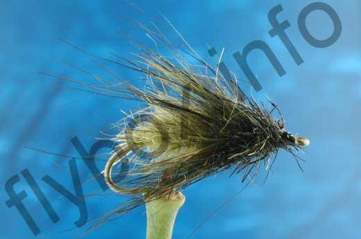 Hairy Olive Caddis Larva