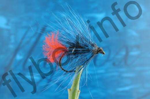 Hairy Blue Zulu