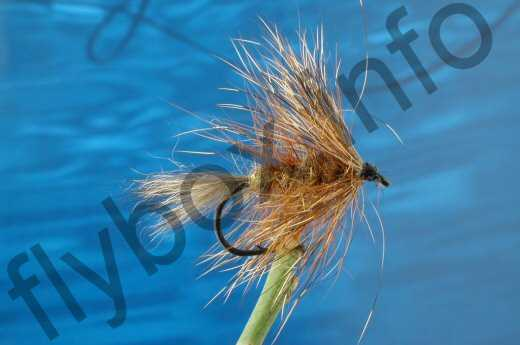 Hairy March Brown