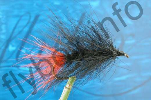Hairy All Black Woolly Worm