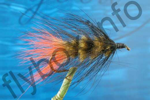 Hairy Olive Black Woolly Worm