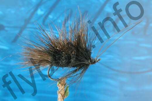 Hairy Black Sedge