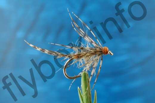 March Brown Spider